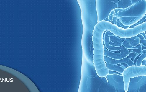 doenças do aparelho digestivo, prevenção, dicas